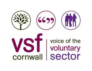 Cornwall VSF - Safer Stronger